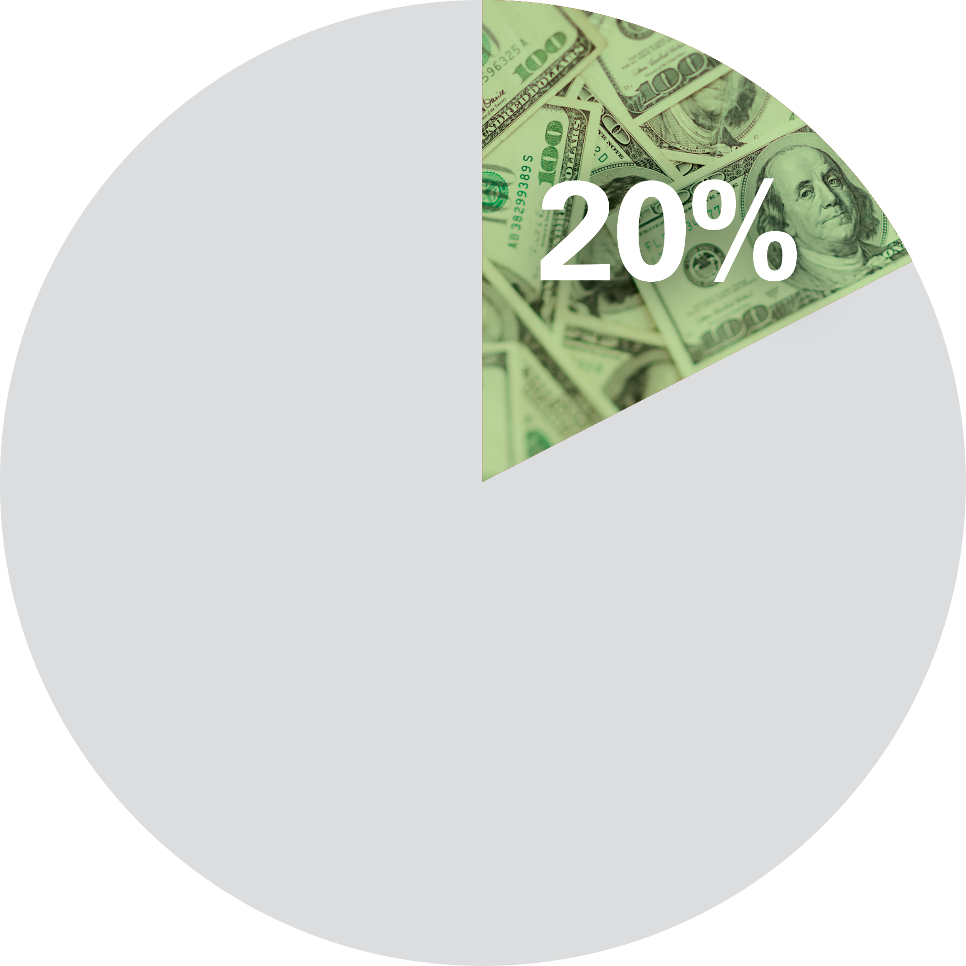 Pie Chart with 20% filled
